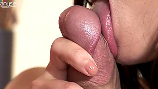 Amazing beautiful brunette gives her lover a nice blowjob