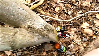 Friends fucking in the woods blowjob and doggystyle the ending is priceless